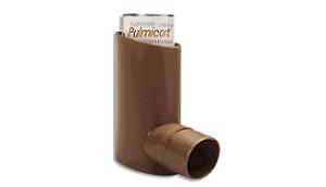 Pulmicort (Budesonide)