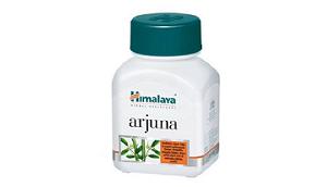 Arjuna Himalaya