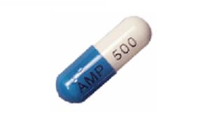 Ampicillin (Principen)